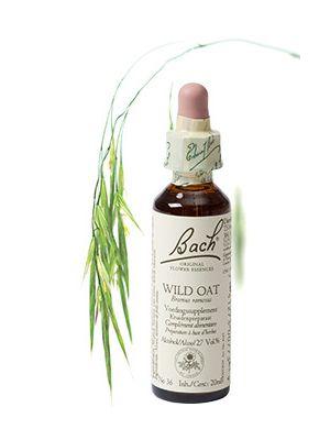 Bach Wild oat / Ruwe Dravik 20 ml 36