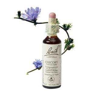 Bach Chicory / Cichorei 20 ml 08