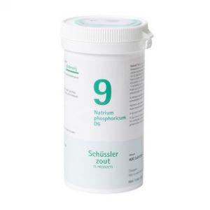 Schussler zout pfluger nr 9 Natrium Phosphoricum  D6 400 Tabletten Glutenvrij