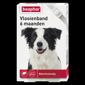 Beaphar Vlooienband hond wit 65 cm